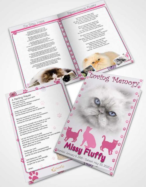 Bifold Order Of Service Obituary Template Brochure Pink Fluffy Cat