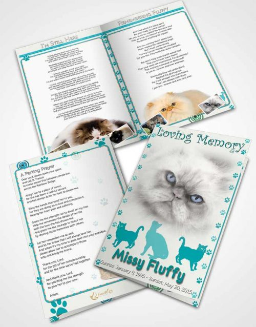 Bifold Order Of Service Obituary Template Brochure Turquoise Fluffy Cat