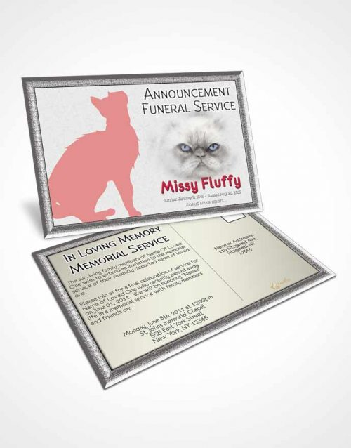 Funeral Announcement Card Template Rosy Fluffy Cat