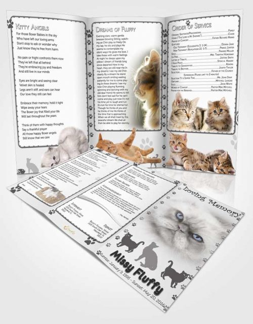 Obituary Template Trifold Brochure Black and White Fluffy Cat
