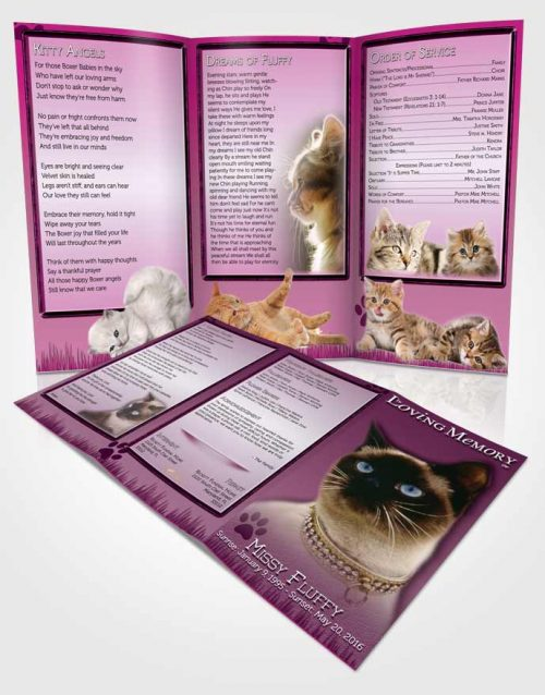 Obituary Template Trifold Brochure Pinky Fluffy Kitty