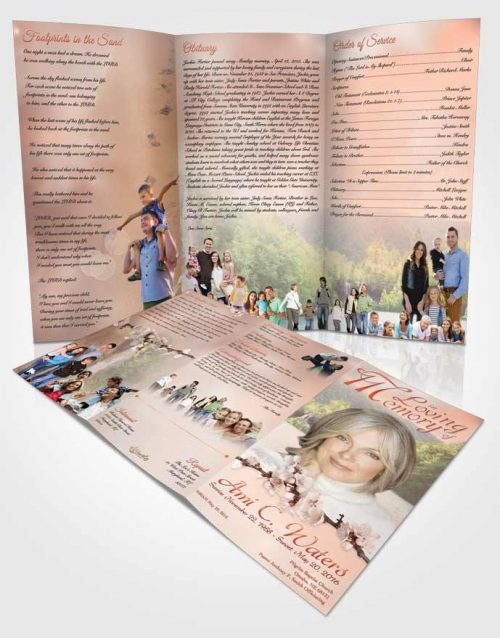 Obituary Template Trifold Brochure Waterfall Heaven Ruby Desire