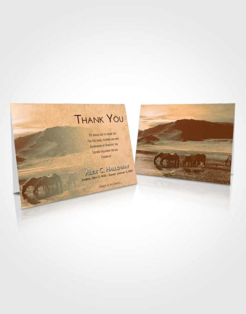 Funeral Thank You Card Template Soft Dusk Watering Hole